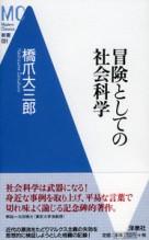 495_hasizume