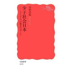 少子社会日本―もうひとつの格差のゆくえ